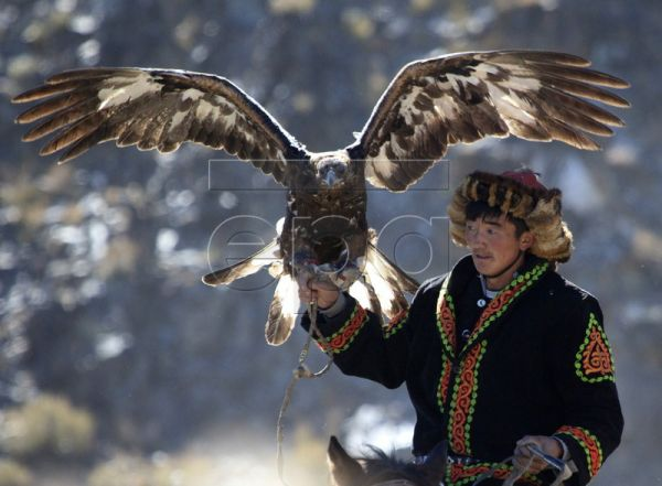An ethnic Kazakh holds his golden eagle in the far west of Mongolia at the annual Eagle Festival in Bayan Oelgiy, Mongolia, 02 October 2010. The festival shows the skills of traditional hunting with golden eagles as well as a range of other sports such as horse racing and horseback tug-of-war. The Kazakhs are the only sizeable ethnic minority in Mongolia, making up around five per cent of the population of the landlocked Central Asian state. EPA/ADRIAN BRADSHAW