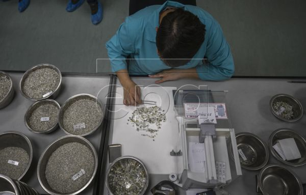 A specialist works with rough diamonds at the ALROSA Diamond Sorting Center (DSC) in Mirny, Sakha (Yakutiya) Republic, Russia, 19 June 2019. The Russian diamond mining company ALROSA operates 12 kimberlite pipes and 16 alluvial deposits in the country's Republic of Sakha (Yakutia) and Arkhangelsk region and employs some 37,000 people at its facilities. EPA-EFE/SERGEI ILNITSKY